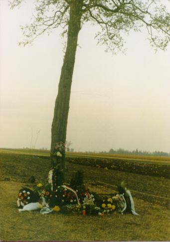 """""""Die Akazie""""- Massengrab in Bajmok Stelle"""